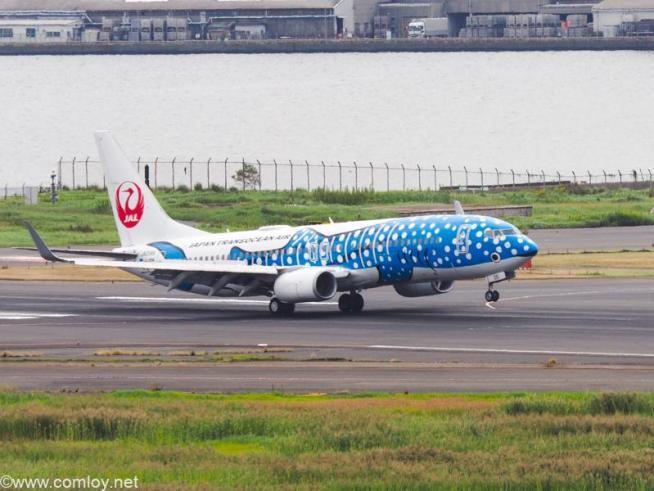 JA05RK B737-800 Boeing737-8Q3 61479/6561 2017/09