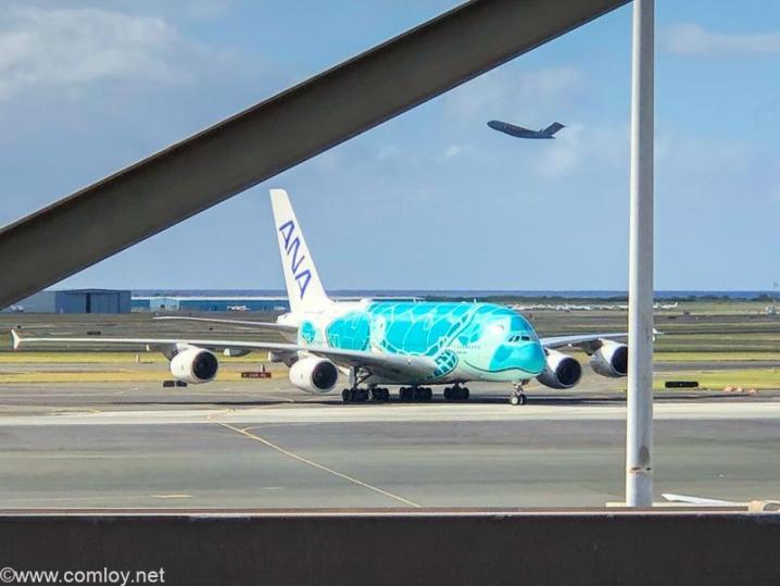 ANA A380@ダニエル・K・イノウエ(旧ホノルル)空港