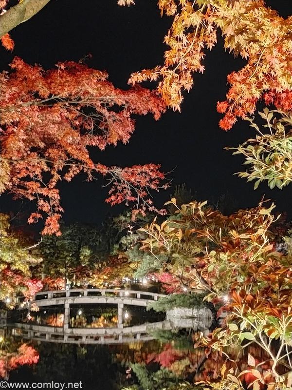 京都永観堂のライトアップ 夜景モードで撮影