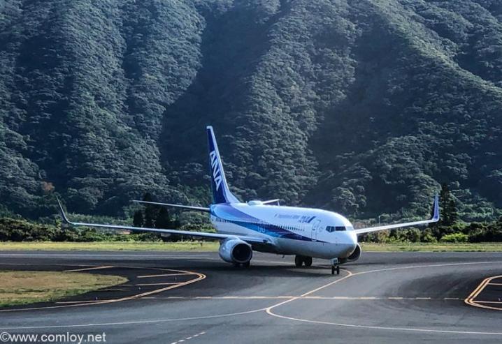 JA59AN B737-800 Boeing737-881 33896/3073 2009/12~