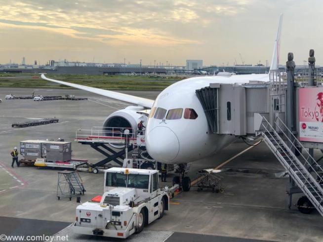 JA849J B787-8 Dreamliner Boeing787-8 Dreamliner 35437/989 2020/03〜