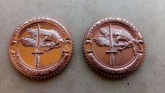 TF Dagger Commemorative Challenge Coin - Version 5: Obverse & Reverse