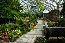 Conservatory Interior, Brookside Gardens, Silver Spring, Marylan
