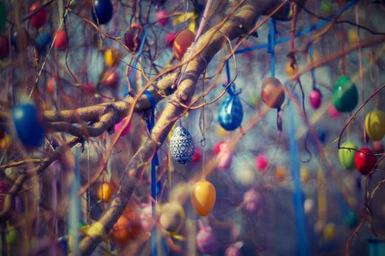 """Dulces de Semana Santa: huevos, monas, """"panquemaos"""", torta de pasas y nueces... 1"""