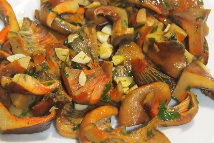 Níscalos, los reyes de la cocina de otoño 1