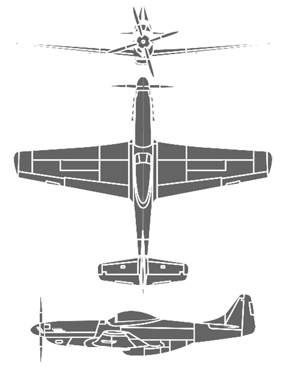 P-51 Mustang : mustang, Gunfighter