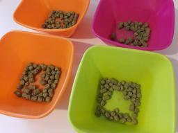 pellets houblon brassage biere