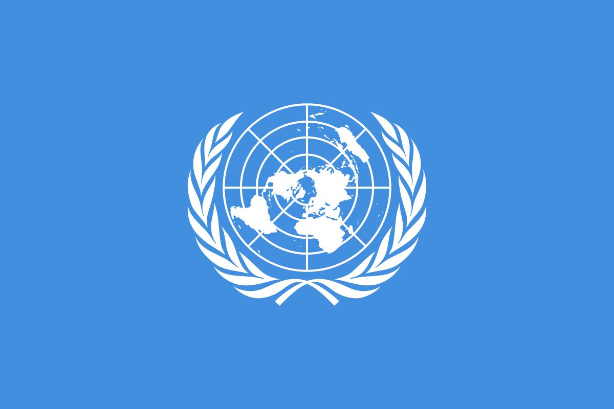 Contacter l'ONU : contacts en ligne, adresses
