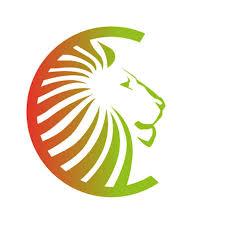 Comment contacter Assurance du Lion?
