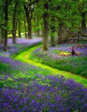 chemin meditation pleine conscience avancer