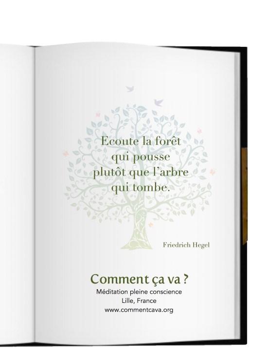 foret pousse arbre tombe hegel meditation pleine conscience