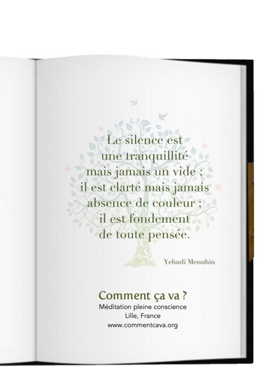 silence meditation pensée emotion seance pleine conscience lille yehudi menuhin