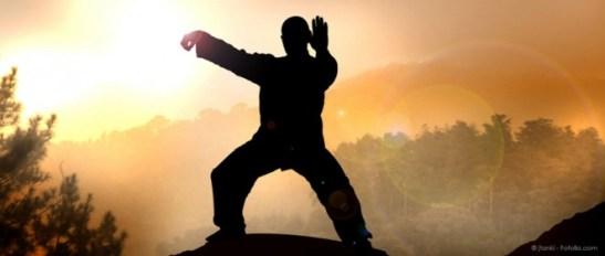 motivation-arts-martiaux-662x281