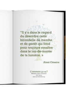 regard-lumiere-amour-doute-citation-aime-cesaire-mindfulness-lille