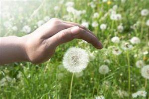 bienveillance-mindfulness