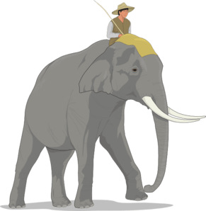 Elephant and Rider