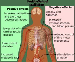 Health_effects_of_caffeine