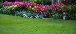 lawn_0563