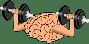 le sport bon pour le cerveau