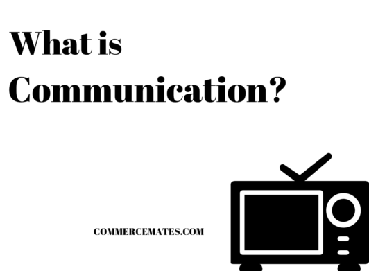 What is Communication? Principles, Process , Importance