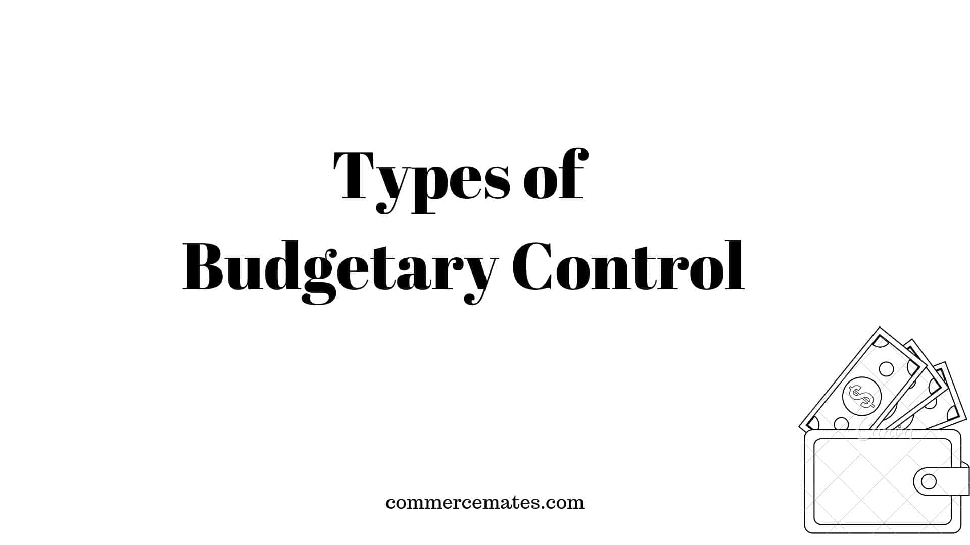 Types of Budgetary Control