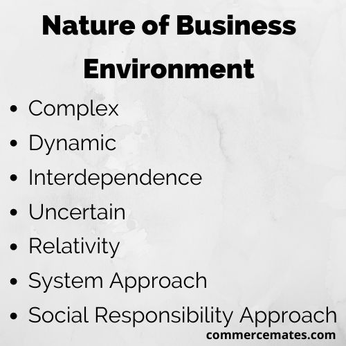 Nature of Business Environment