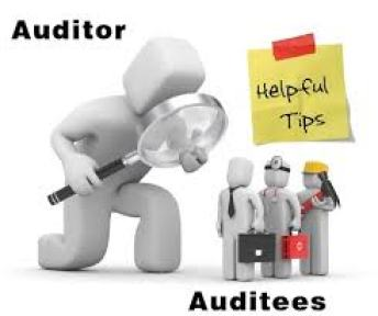 accountant vs auditor