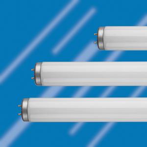 three T12 fluorescent tubes