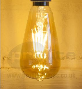LED filament squirrel cage bulb lit