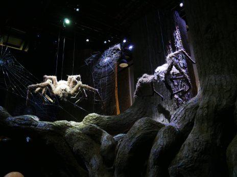 Les autres araignées de la forêt interdite