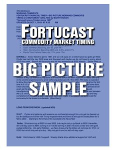 Fortucast Sample Big Picture Timer