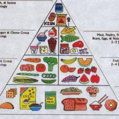 New Food Pyramid Diagram Rv Electric Water Heater Wiring York Times Commodore Herbivore