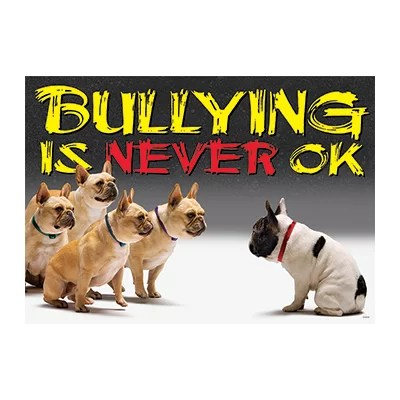 Bullying Is Never Ok Argus Large emotional literacy willl help children better deal with bullying , how to inmprove their emotional inteligence