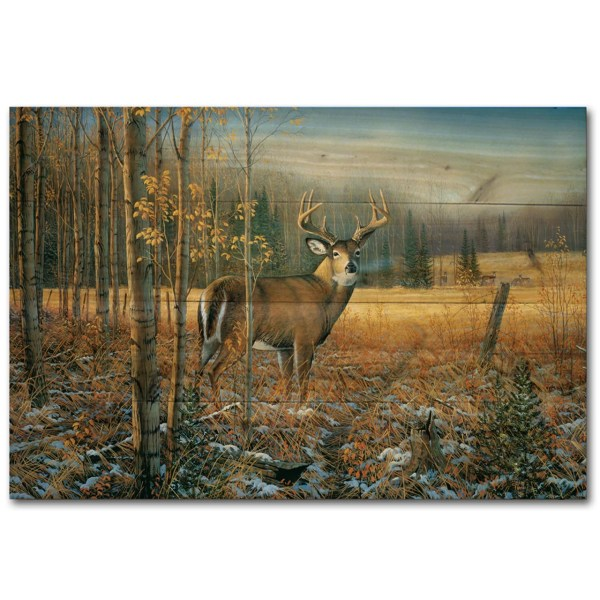 November Whitetail Deer Sam Timm Painting Print Plaque