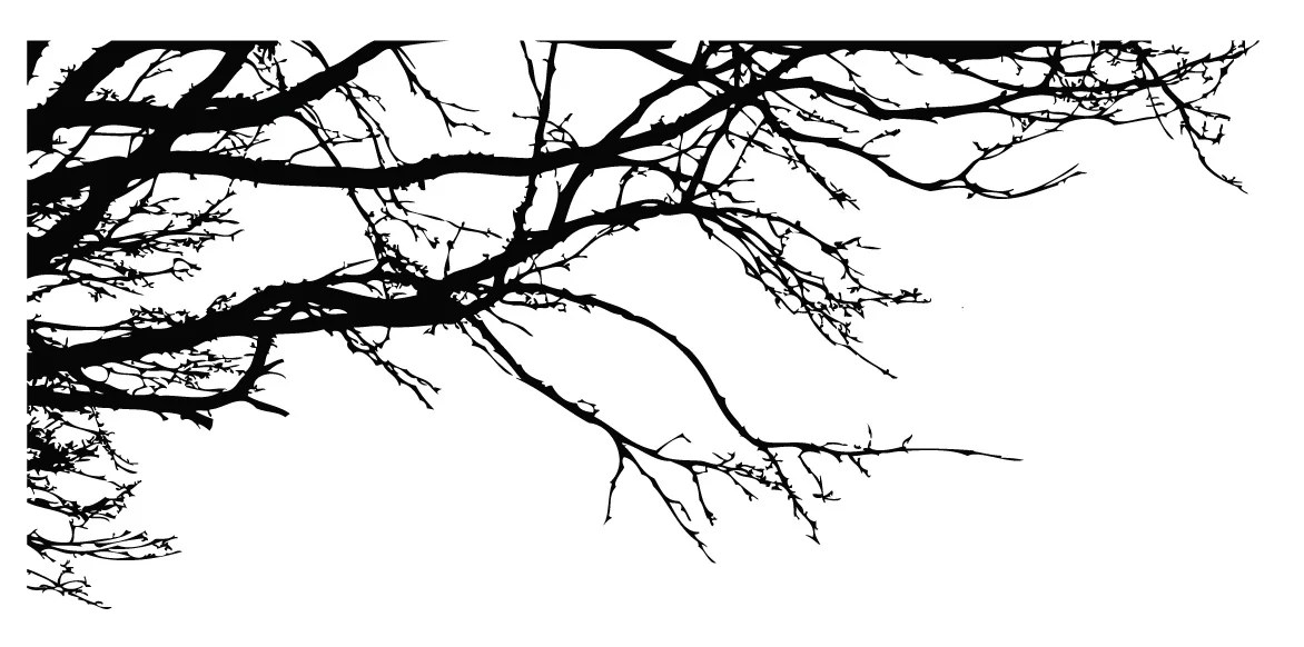 Innovative Stencils Tree Top Oak Branches Wall Decal