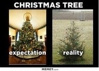 christmastreereality