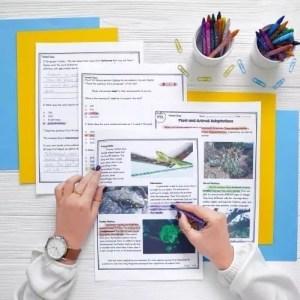 📘 4th Grade Reading Comprehension