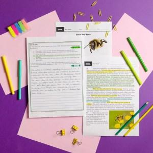 📒 6th Grade Reading Comprehension