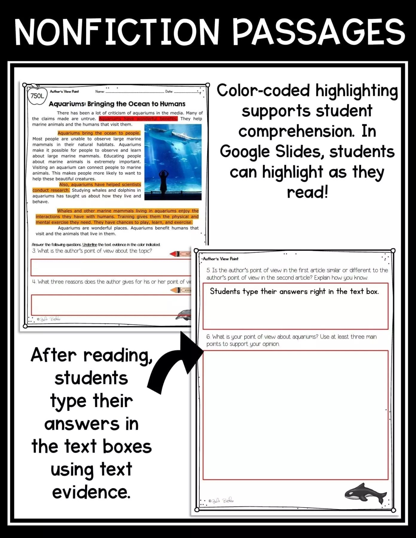 3rd grade Author's Viewpoint in Nonfiction RI.3.6  Common Core Kingdom [ 1800 x 1391 Pixel ]