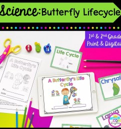 Butterfly Life Cycle- 1st \u0026 2nd Grade Google Slides \u0026 Seesaw Distance  Learning   Common Core Kingdom [ 1800 x 1800 Pixel ]