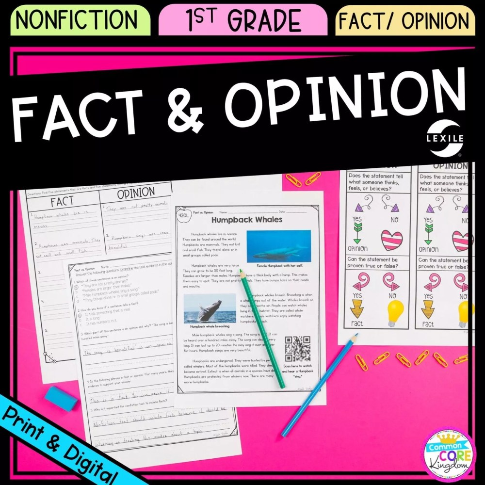 medium resolution of Fact and Opinions 1st Grade - Google Distance Learning   Common Core Kingdom