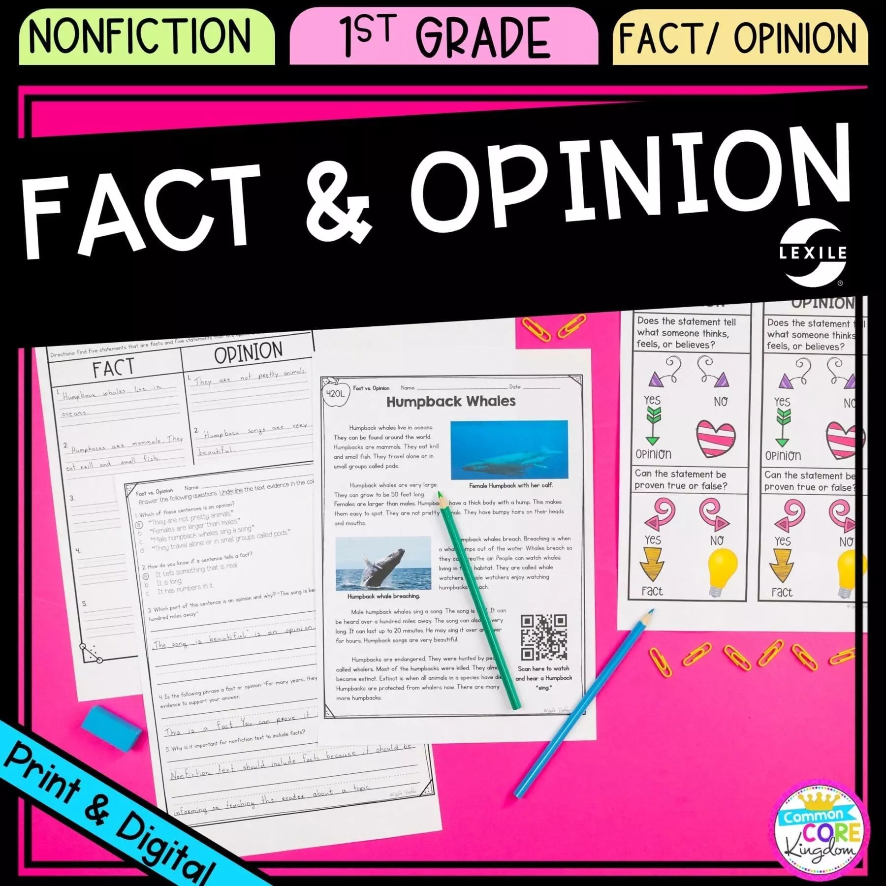 hight resolution of Fact and Opinions 1st Grade - Google Distance Learning   Common Core Kingdom