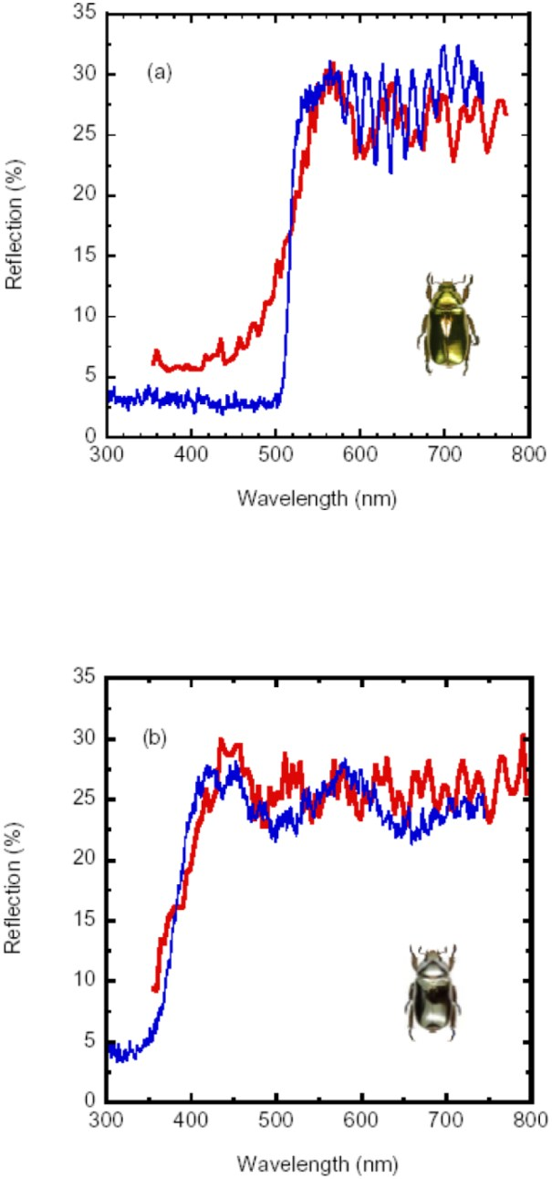 Reflection spectra from the University of Costa Rica Study.  Image sourced from Article.