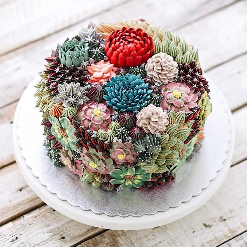 Succulent-inspired round cake