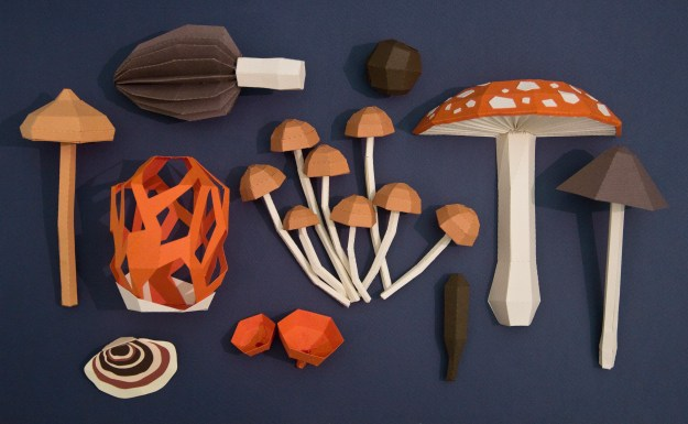 Collection of fungi paper sculptures by Estudio Guardabosques. Not animals, but still worth showing here.