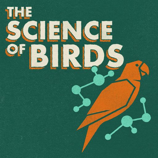 """Logo from The Science of Birds podcast, a """"curated presentation of nerdy information about birds"""""""