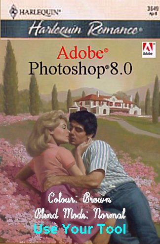 Computer books with romance covers
