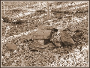 Stacked stones on the forest floor, Little Mulberry Park, Gwinnett County, GA.