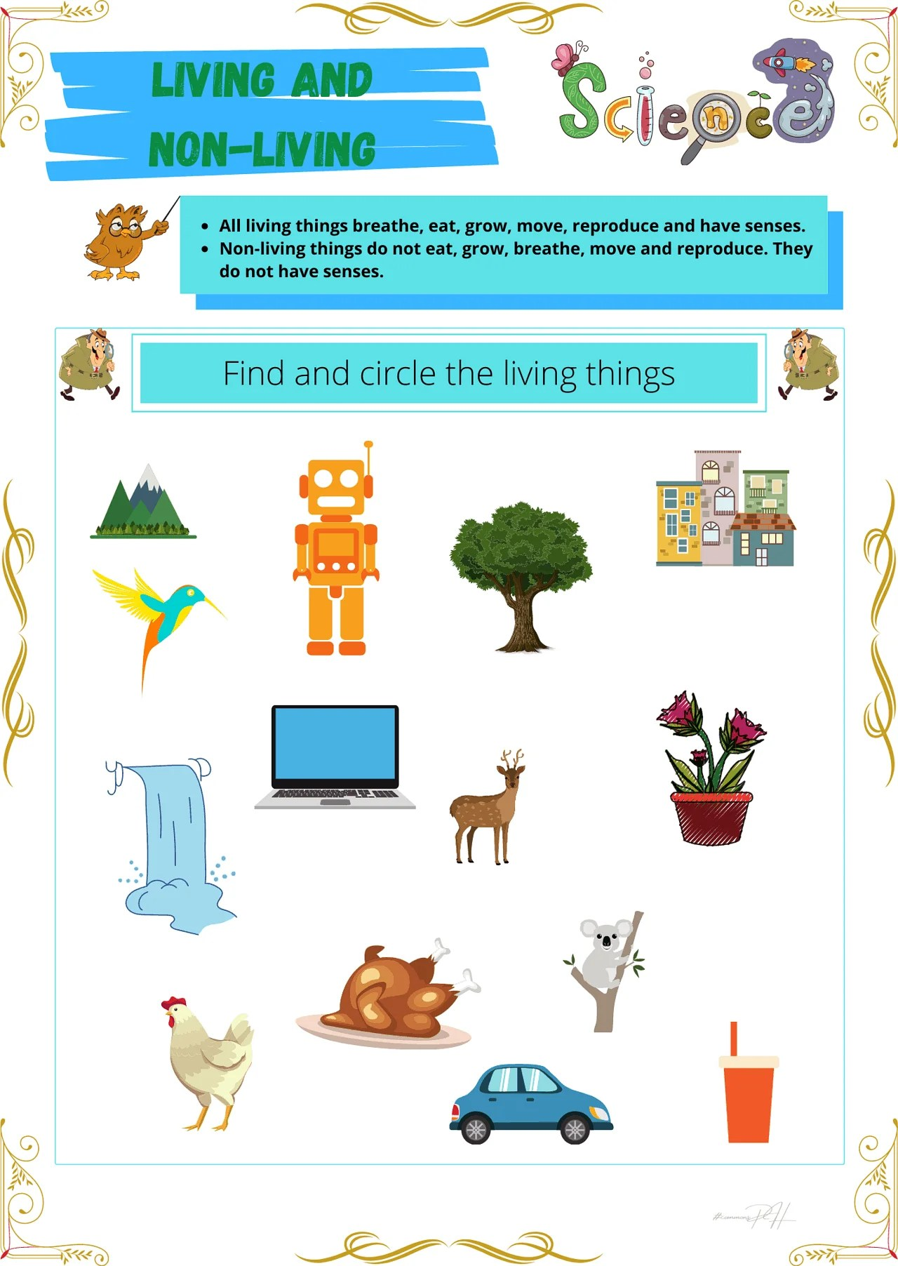 Grade 1 Science Worksheet   Living Things and Non-Living Things [ 2000 x 1419 Pixel ]