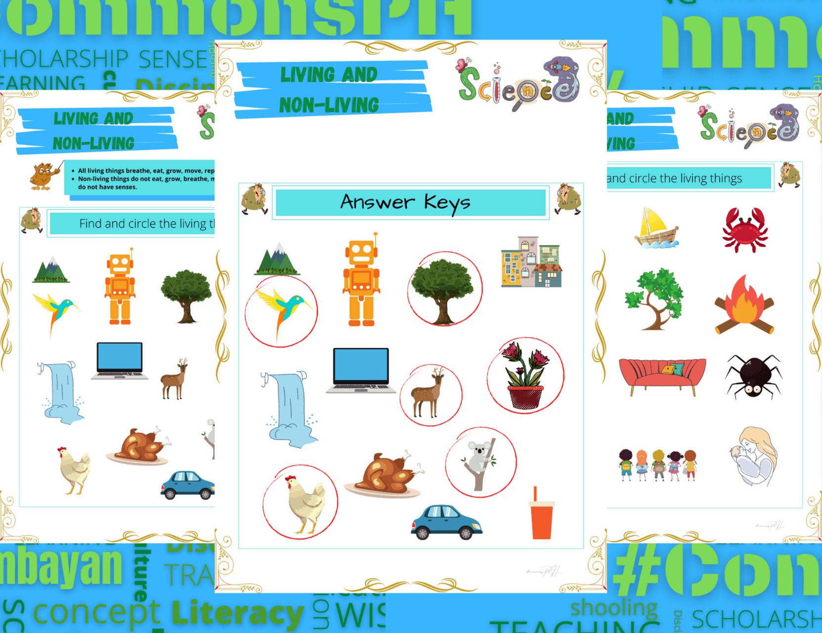 Grade 1 Science Worksheet